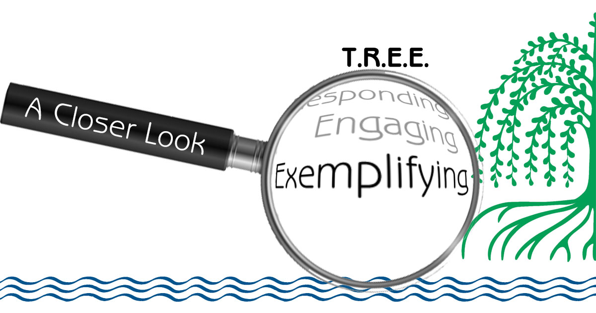 Exemplifying - A Closer Look